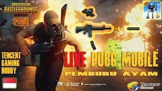 🔴[LIVE] MABAR LAGI KUY ~ PUBG MOBILE 60FPS (TGB) 🐔 22-05-2018