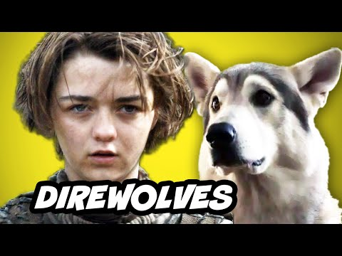 Game Of Thrones Season 5 - Direwolves Explained