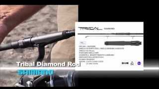 Canna da pesca Shimano Tribal Diamond