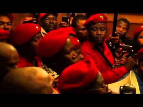 Julius Malema forcefully removed from Gauteng legislature