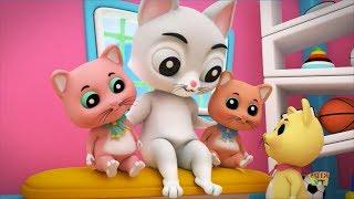 Meo Meo Meo Rửa Mặt Như Mèo - Nhạc Thiếu Nhi Vui Nhộn Hay Nhất Cho Bé - Chú Mèo Con
