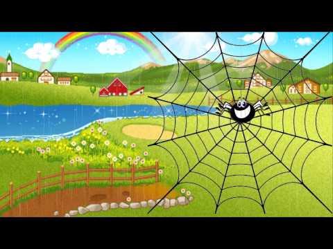 witzi araña tatiana