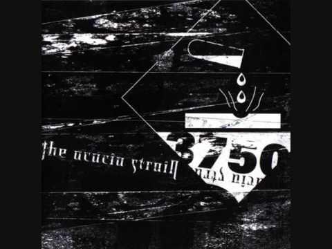The Acacia Strain - Halcyon