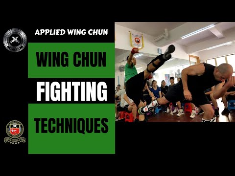 Wing Chun Fighting Techniques Image 1