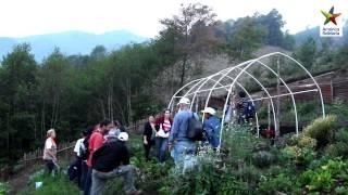 Modelo de Cooperación Proyecto Huertas de autoconsumo en Guatemala