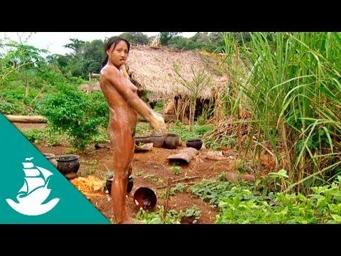 Amazonia: La Selva y el Asfalto (documental completo)