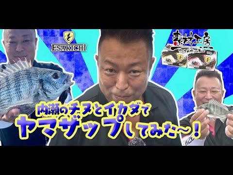 【おしえて!えさきちさん】内瀬のチヌと筏でヤマザップしてみた~!