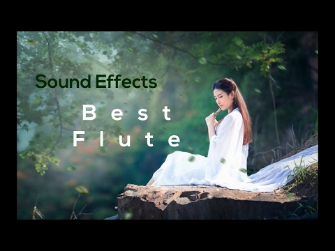 Best Flute Ringtone | Sound Effects