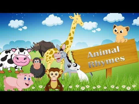 Animal Rhymes Medley | Collection Of 15 Rhymes | Vol 1 video