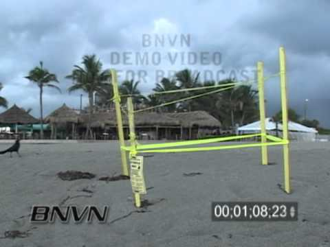 7/27/2006 Sea Turtle Nest Video, Venice Beach FL Sea Turtle Nest