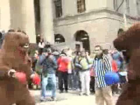 """Кикбоксинг """"быка"""" и """"медведя"""" в Нью-Йорке"""