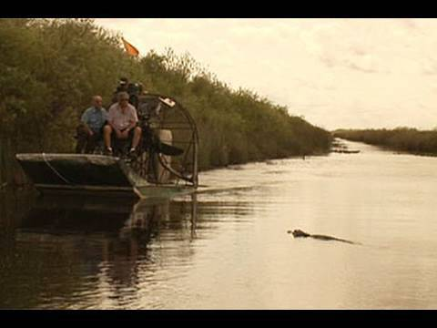 Deal to save Everglades attacked Video