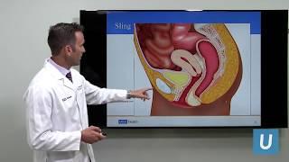 Female Bladder Leakage: Solutions to Get Control | UCLA Obstetrics \u0026 Gynecology
