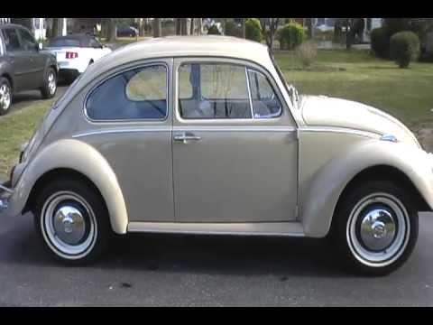 Old Fashioned Beetle