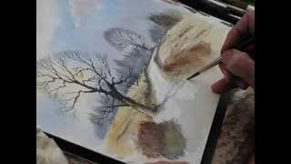 Studio Demo about Road Side Tree by David Bellamy