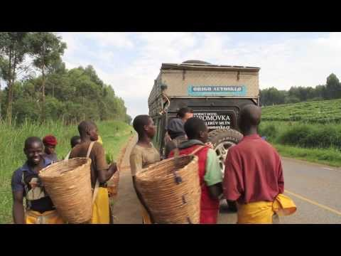 Expedition ALL AFRICA 2013 - Uganda, Rwanda, Congo, Burundi