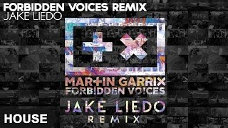 Martin Garrix - Forbidden Voices (Jake Liedo Remix)