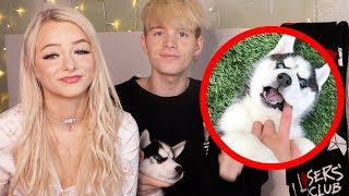 WE ADOPTED OUR FIRST PUPPY! FT. Zoe Laverne & Cody Orlove