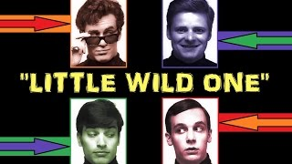 Watch Wonders Little Wild One video