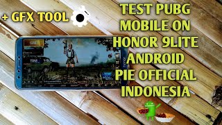 Game test Pubg on honor 9 lite android pie official Indonesia