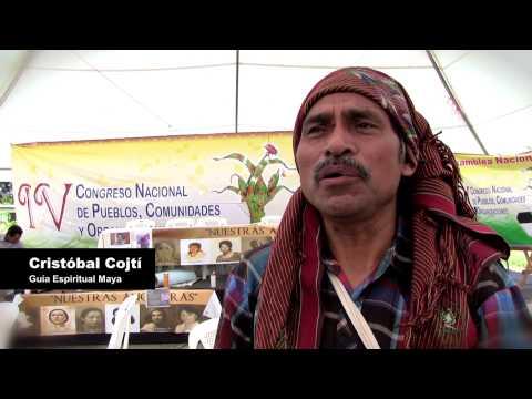 Polochic y Curuguaty: Sin tierra no hay futuro