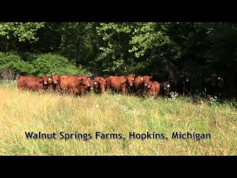 Walnut Springs Farms, Hopkins, Michigan