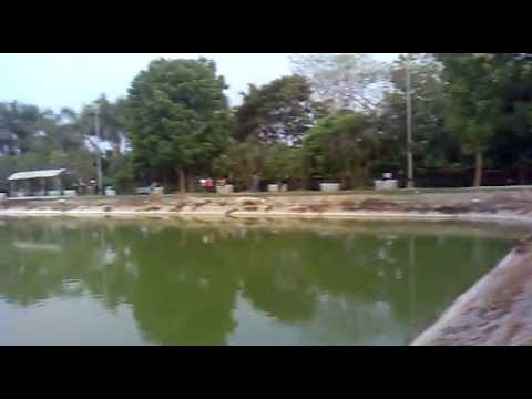 Indian Lovers Park video