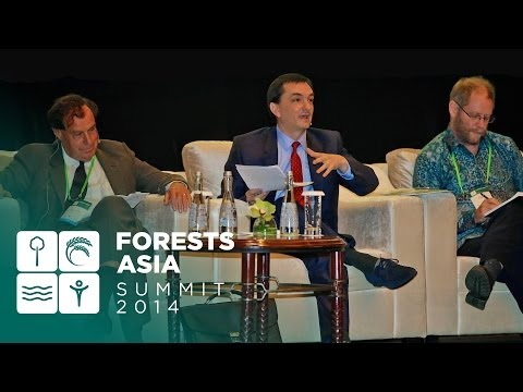 Forests Asia 2014 - Day 1 Discussion forum, Innovative approaches to financing, green returns