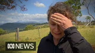 Residents count cost of properties lost in Queensland's bushfire crisis | ABC News