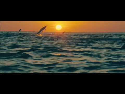 Oceans - Disney Nature Official Trailer 2010