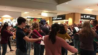 12.22.18 FM Youth Symphony at the mall