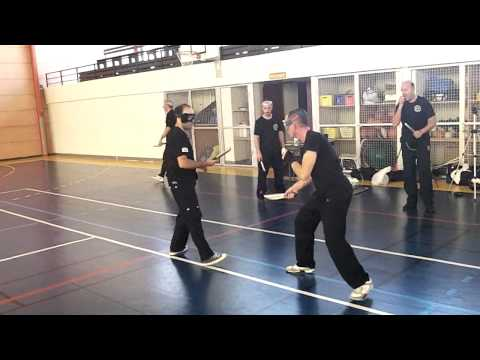 Knife fighting, knife defense ,machete- A.C.T. seminar in France, June 2011 Image 1
