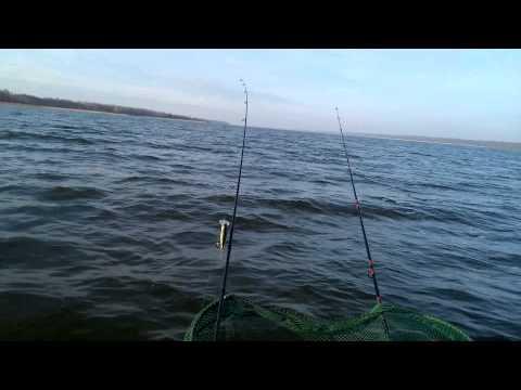 ловля на озере свирь