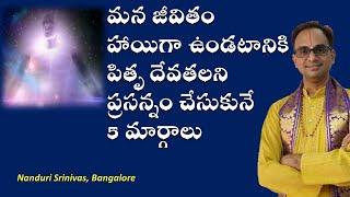 పితృ దేవతలని ప్రసన్నం చేసుకునే 5 మార్గాలు - 5 rituals to satisfy Pitru Devatas- Nanduri Srinivas