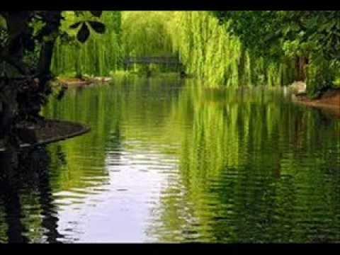 Zikar E Khuda Da By Qari Saeed Ur Rehman Hassani Haripur - Uploaded By Mobeen Abdullah Sikander Pur video