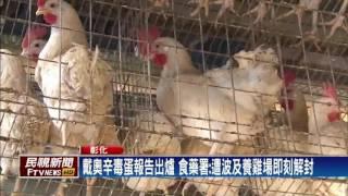 2養雞場遭毒蛋波及 業者:老婆氣到離家出走