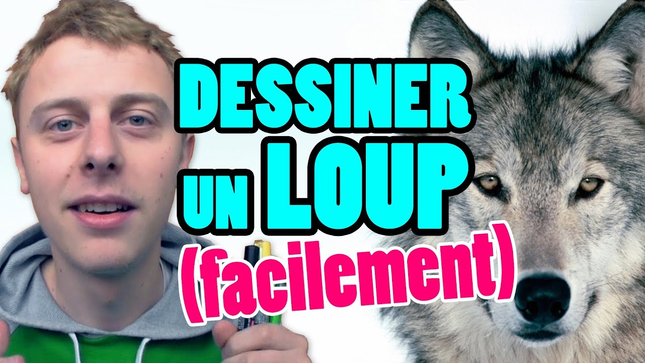 Petit bonus comment dessiner un loup facilement norman youtube - Loup dessin facile ...