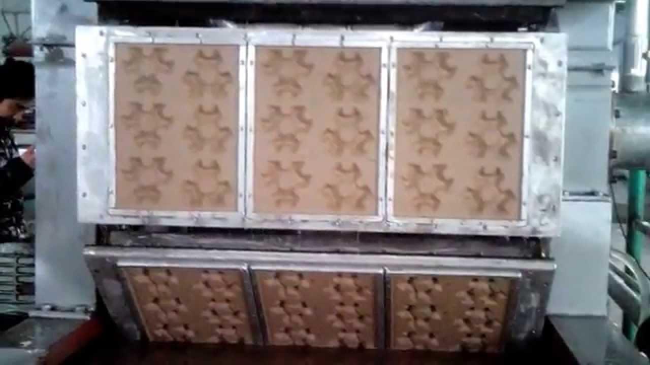 Molded Pulp Manufacturer Manufacturer of Molded Pulp