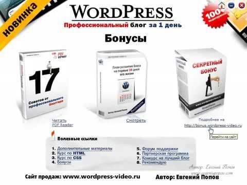 Wordpress - Профессиональный блог за один день. (Евгений Попов)