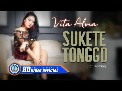 Download Vita Alvia - SUKETE TONGGO      HD Mp4 baru