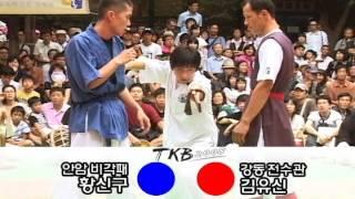 택견배틀 2008 TKB 34배틀 안암비각패 VS 서울 강동