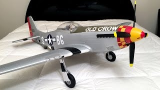 Unboxing and Review - Eleven Hobby P-51 Mustang WWII Warbird RC Plane