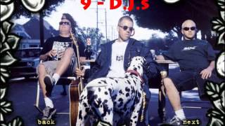 Sublime Video - Sublime - Stand By Your Van FULL ALBUM (Live)