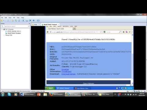 Introduction to Malware Analysis
