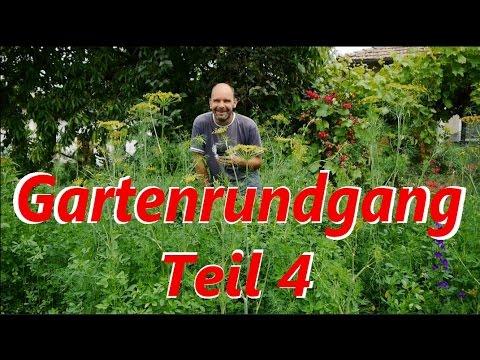 Chilli Und Tomaten Im Garten Und Vieles Mehr. :)