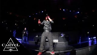 Daddy Yankee - Madison Square Garden (2011) [Live]