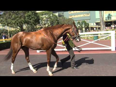 Kentucky Derby 140: Ep. 5 - 3 yr. old takes 76 yr. old to the Kentucky Derby