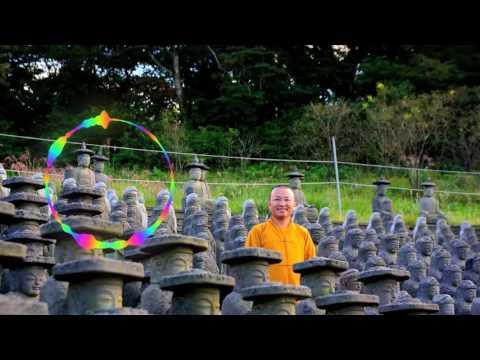 Vấn đáp: Giới trẻ trong đạo Phật