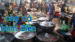 Chợ BÌNH ĐIỀN tham quan chợ cá chợ ốc gặp lươn vàng quí hiếm