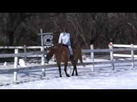 Winter Horse Riding Lacey